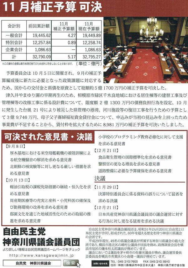 平成29年1月発行 第三回定例会報告号 号外